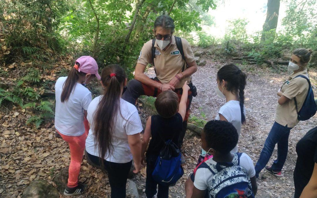 Esplorando la Riserva Naturale Oasi WWF Cratere degli Astroni- Intervista alle 2 guide sul tema del rispetto della natura